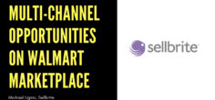 Multi-Channel Opportunities on Walmart Marketplace w/ Michael Ugino, Sellbrite
